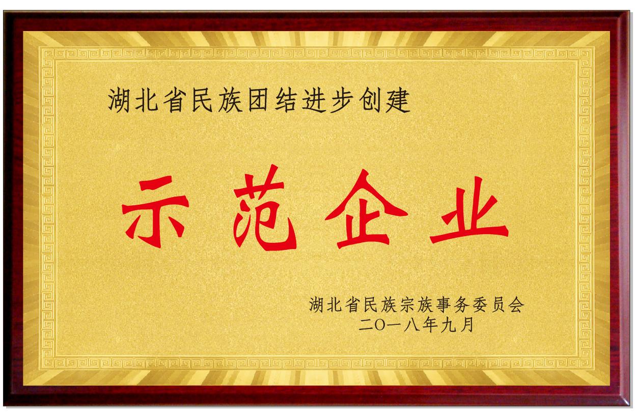 湖北省民族團結進步創建示范企業