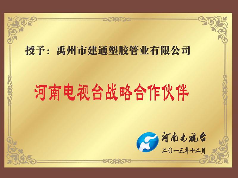 河南电视台战略合作伙伴