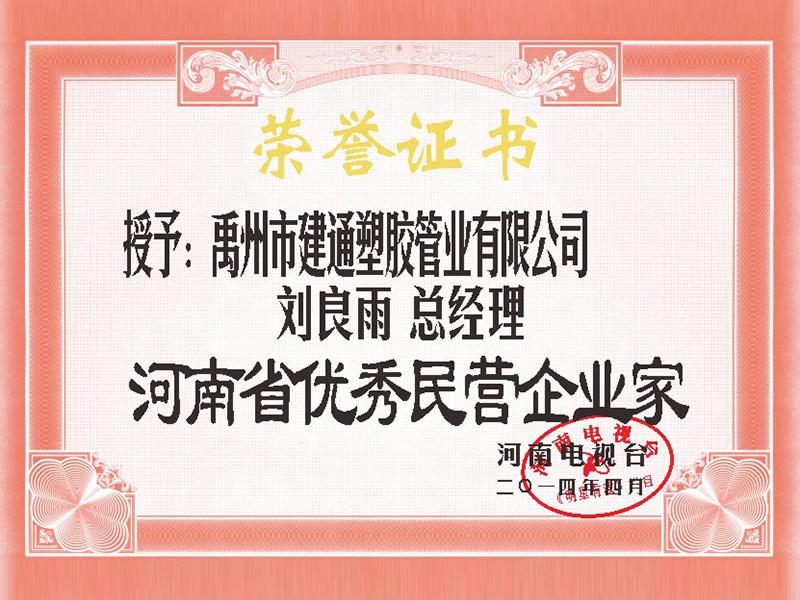 河南省优秀民营企业家