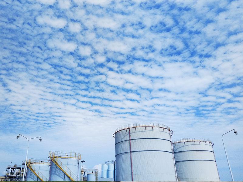 惠州仁信新材料股份有限公司年产18万吨聚苯乙烯新材料扩建项目环境影响评价第一次信息公示文件下载